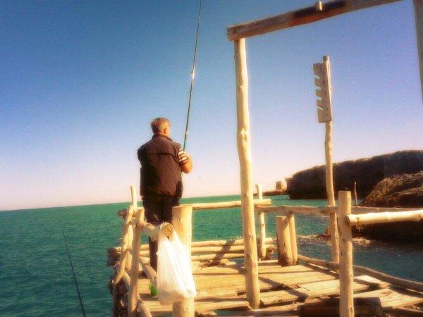 pesca vieste